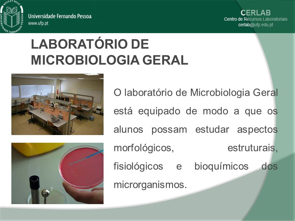 LABORATÓRIO DE MICROBIOLOGIA GERAL