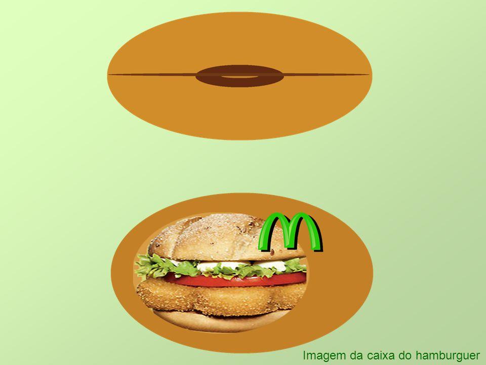 Imagem da caixa do hamburguer