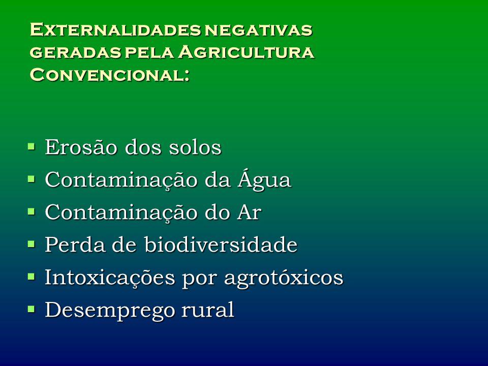 Externalidades negativas geradas pela Agricultura Convencional:
