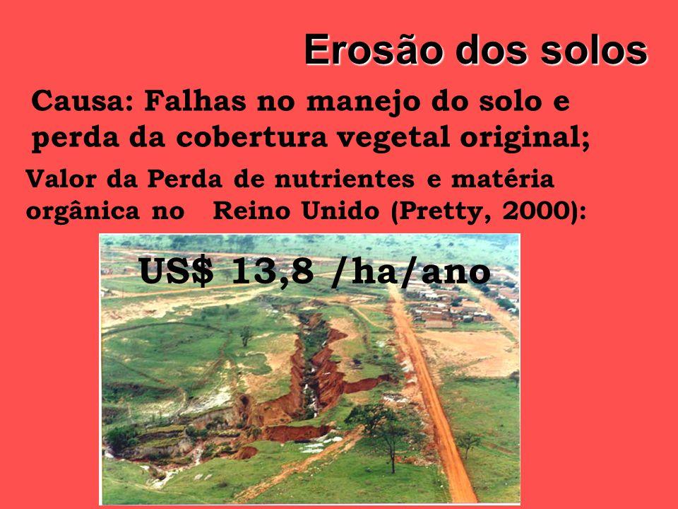 Erosão dos solos US$ 13,8 /ha/ano