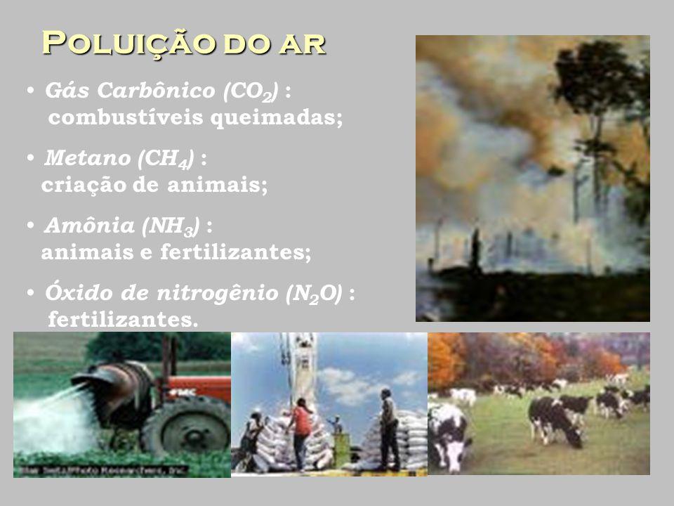 Poluição do ar Gás Carbônico (CO2) : combustíveis queimadas;