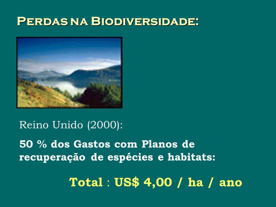 Perdas na Biodiversidade: