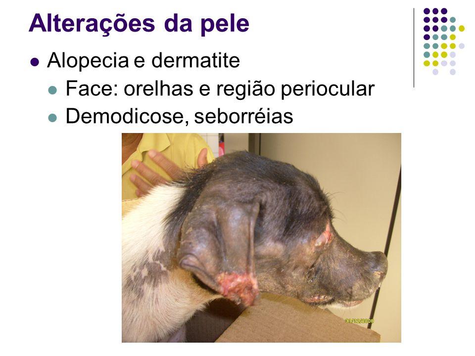 Alterações da pele Alopecia e dermatite