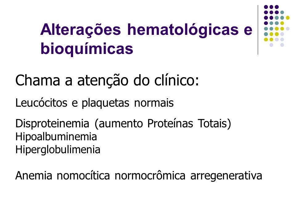 Alterações hematológicas e bioquímicas