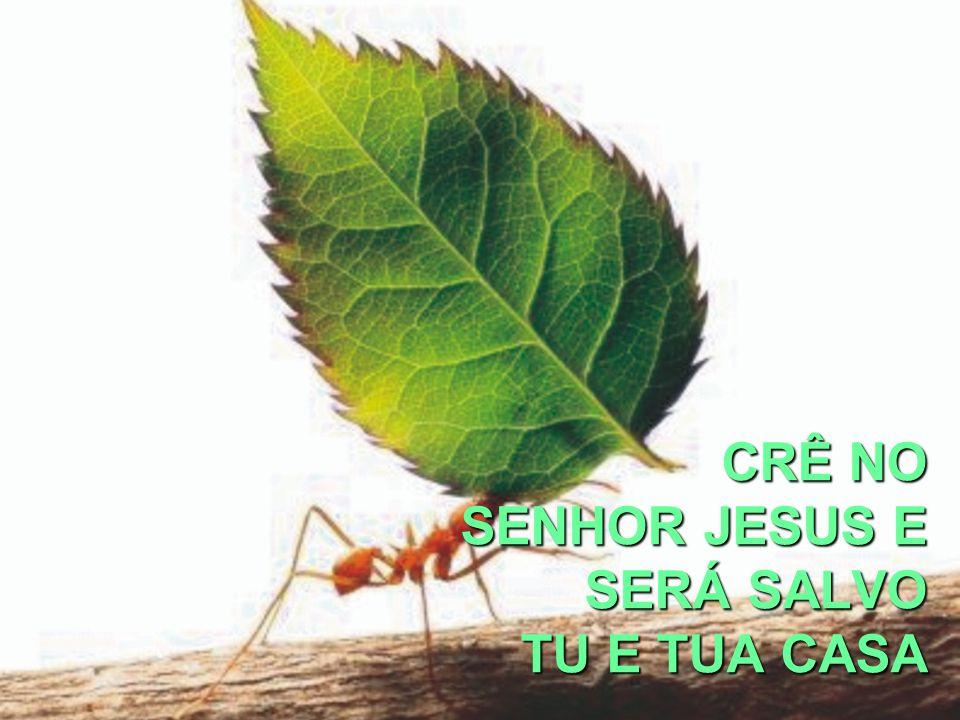 CRÊ NO SENHOR JESUS E SERÁ SALVO TU E TUA CASA
