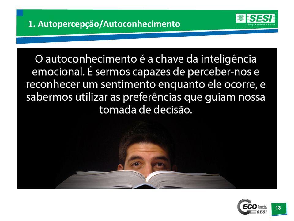 1. Autopercepção/Autoconhecimento