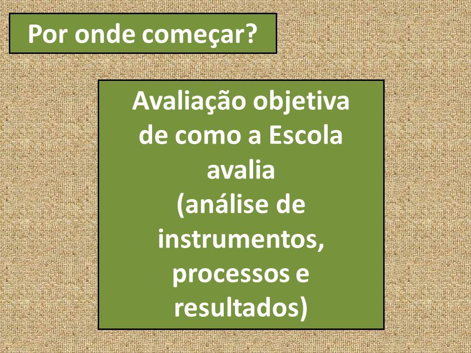 (análise de instrumentos, processos e resultados)