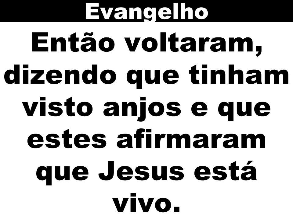 Evangelho Então voltaram, dizendo que tinham visto anjos e que estes afirmaram que Jesus está vivo.