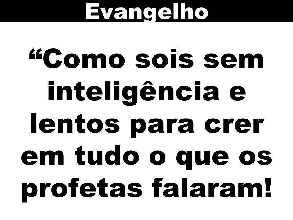 Evangelho Como sois sem inteligência e lentos para crer em tudo o que os profetas falaram! 107