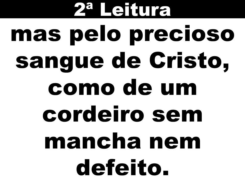 2ª Leitura mas pelo precioso sangue de Cristo, como de um cordeiro sem mancha nem defeito. 75