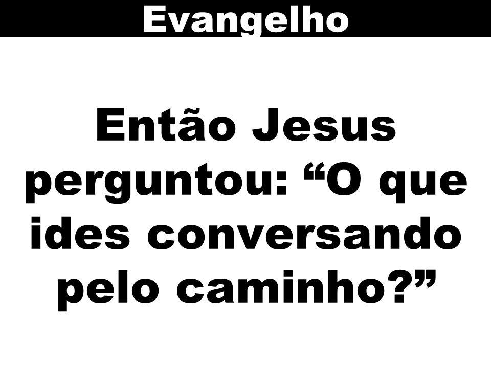Então Jesus perguntou: O que ides conversando pelo caminho