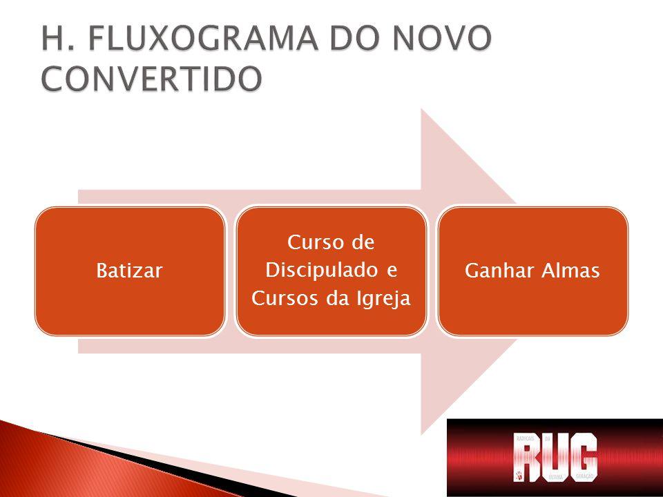 H. FLUXOGRAMA DO NOVO CONVERTIDO