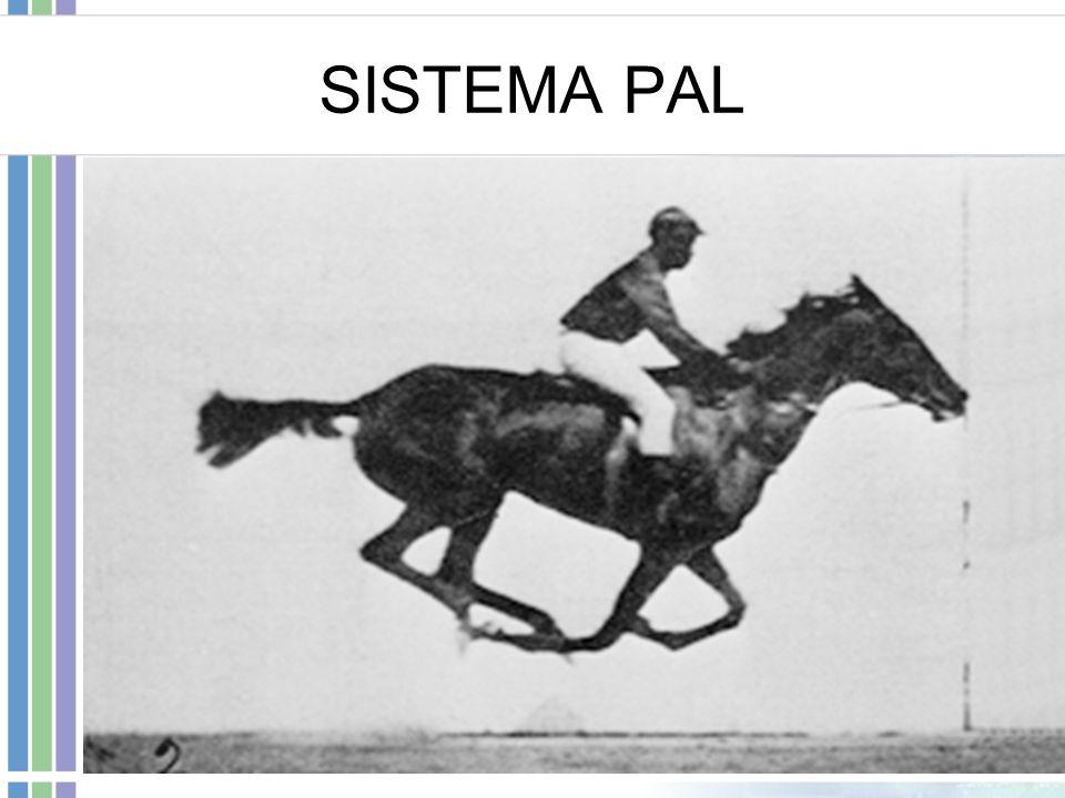 SISTEMA PAL