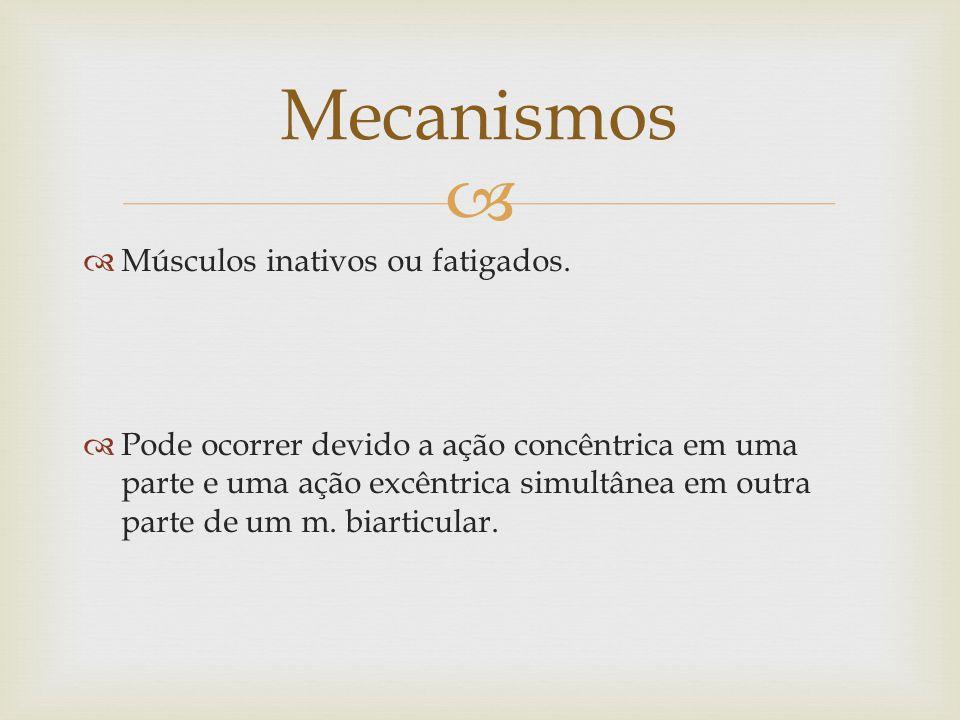 Mecanismos Músculos inativos ou fatigados.