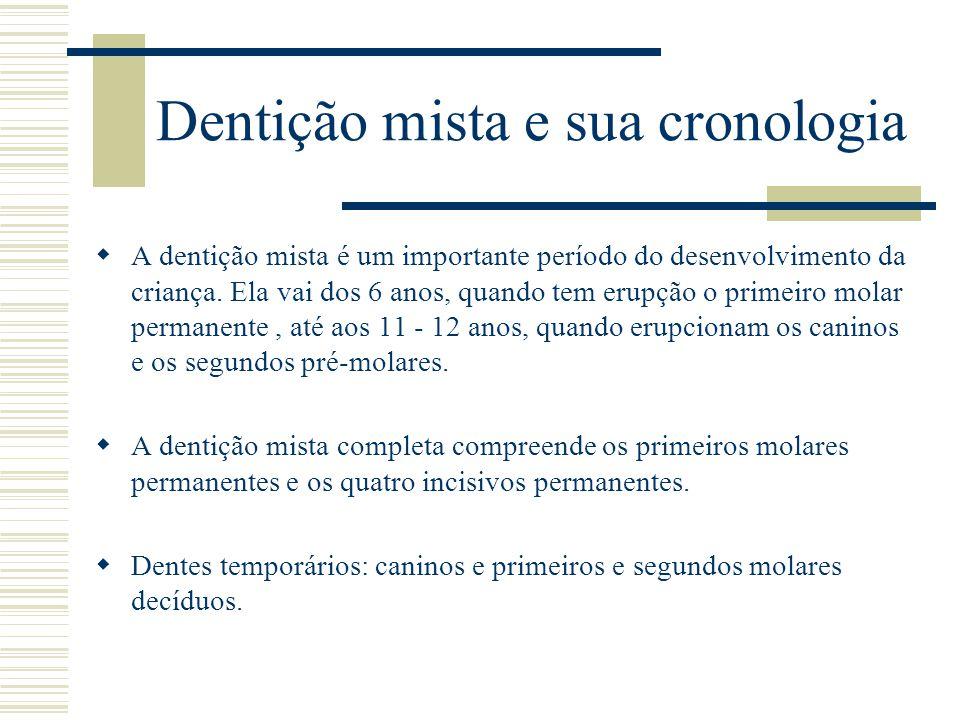 Dentição mista e sua cronologia