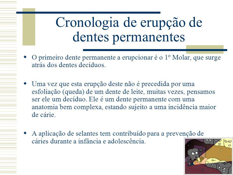 Cronologia de erupção de dentes permanentes