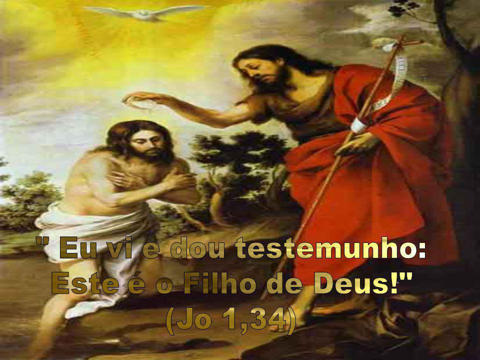 Eu vi e dou testemunho: Este é o Filho de Deus! (Jo 1,34)