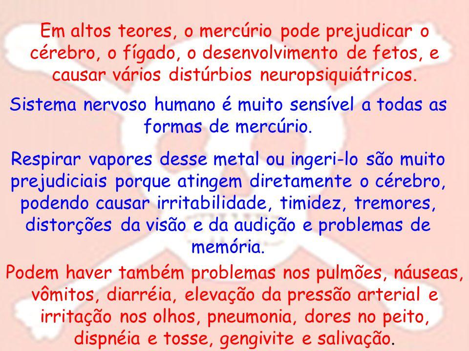 Sistema nervoso humano é muito sensível a todas as formas de mercúrio.