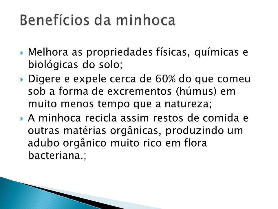 Benefícios da minhoca Melhora as propriedades físicas, químicas e biológicas do solo;