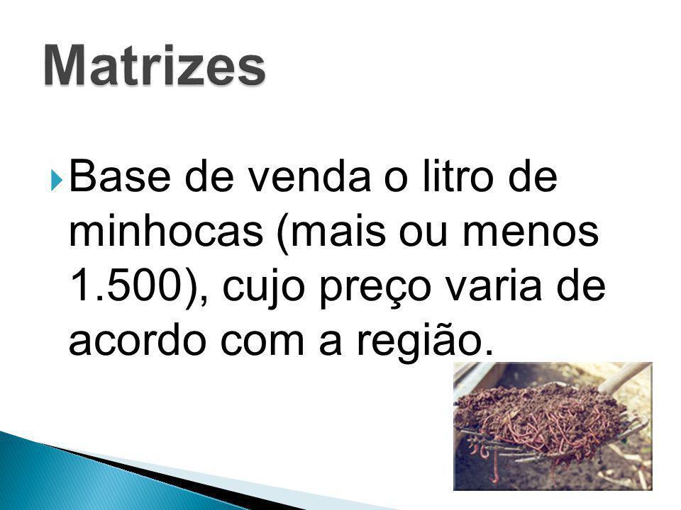 Matrizes Base de venda o litro de minhocas (mais ou menos 1.500), cujo preço varia de acordo com a região.