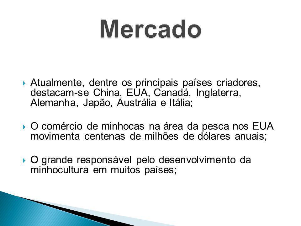 Mercado Atualmente, dentre os principais países criadores, destacam-se China, EUA, Canadá, Inglaterra, Alemanha, Japão, Austrália e Itália;