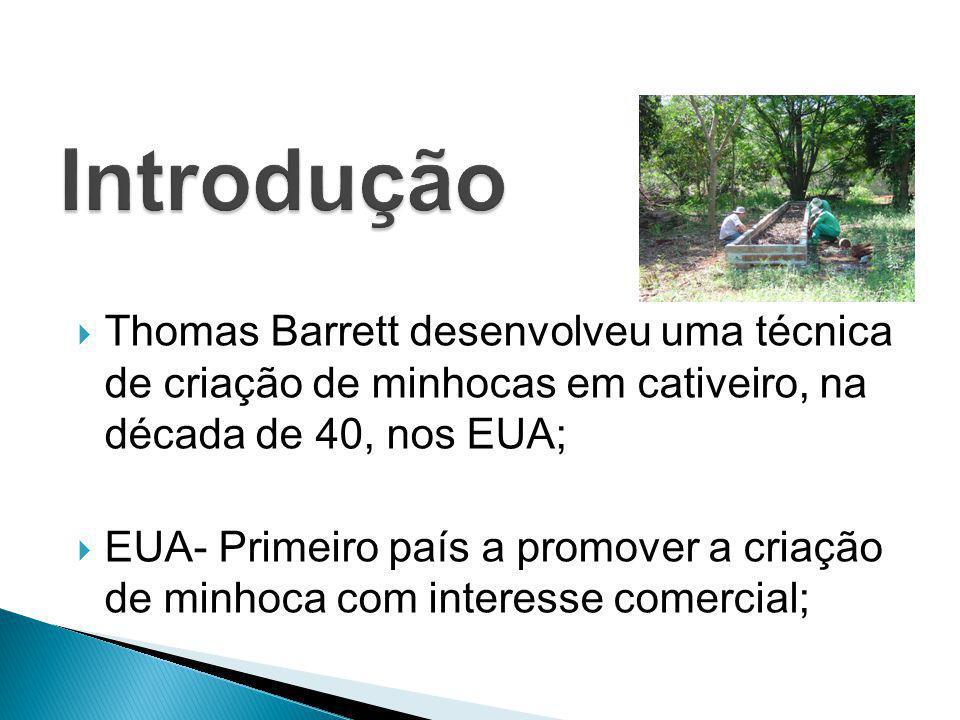 Introdução Thomas Barrett desenvolveu uma técnica de criação de minhocas em cativeiro, na década de 40, nos EUA;