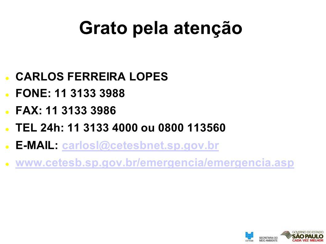 Grato pela atenção CARLOS FERREIRA LOPES FONE: 11 3133 3988