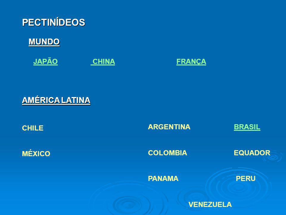 PECTINÍDEOS MUNDO AMÉRICA LATINA JAPÃO CHINA FRANÇA CHILE MÉXICO