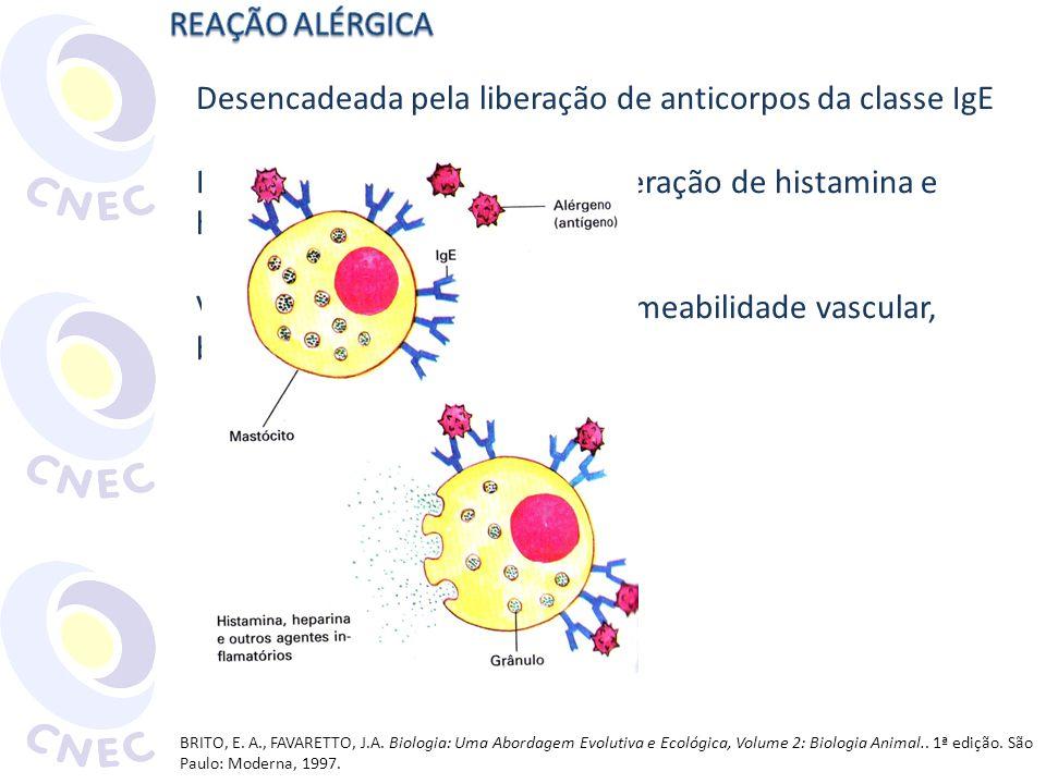 Desencadeada pela liberação de anticorpos da classe IgE