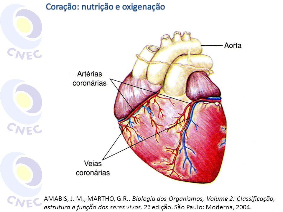 Coração: nutrição e oxigenação
