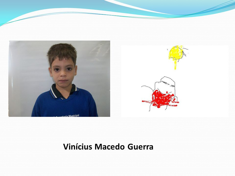 Vinícius Macedo Guerra