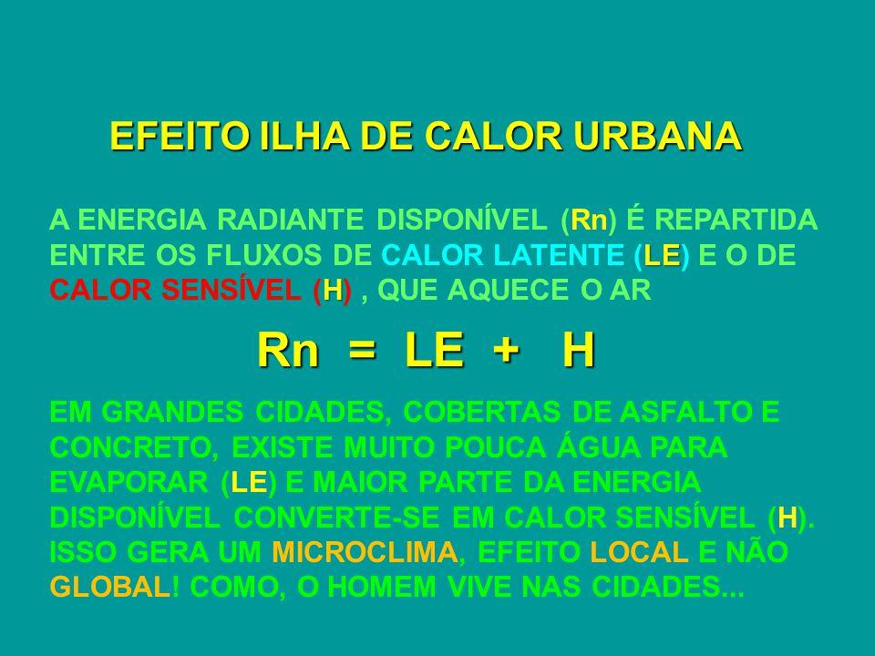 EFEITO ILHA DE CALOR URBANA