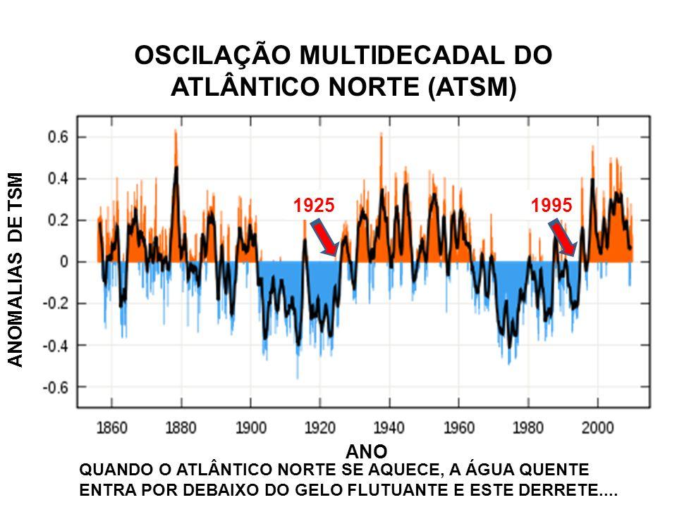 OSCILAÇÃO MULTIDECADAL DO ATLÂNTICO NORTE (ATSM)