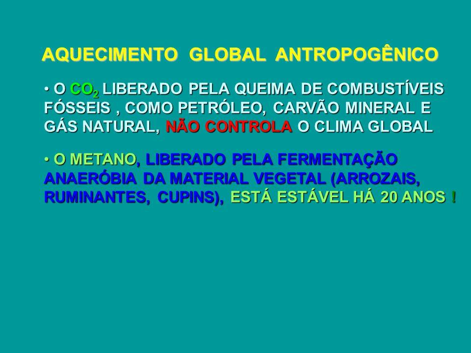 AQUECIMENTO GLOBAL ANTROPOGÊNICO