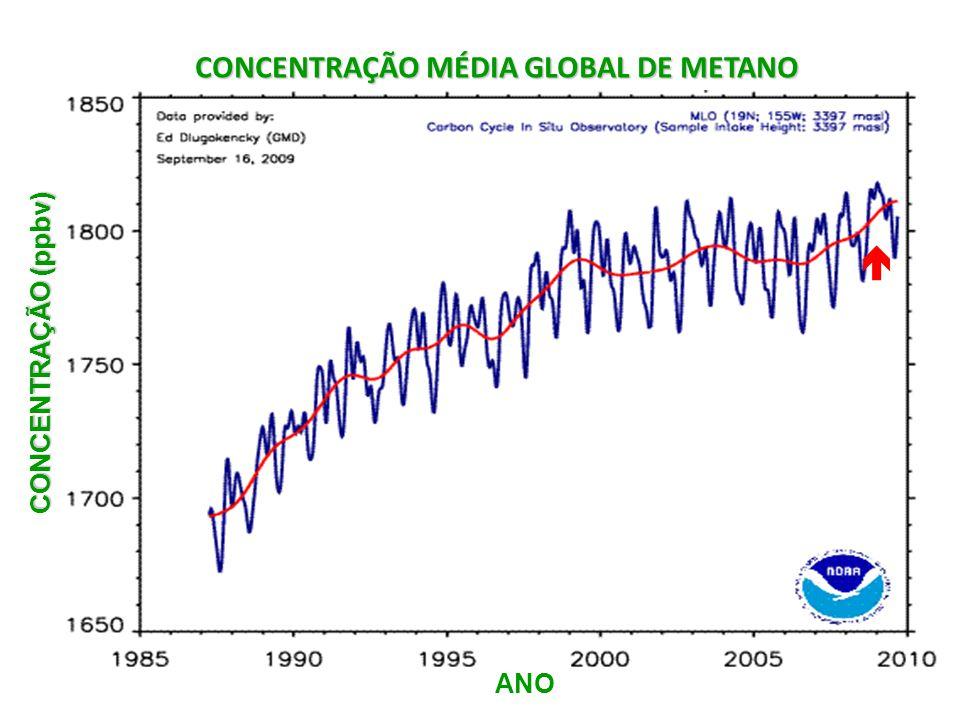 CONCENTRAÇÃO MÉDIA GLOBAL DE METANO
