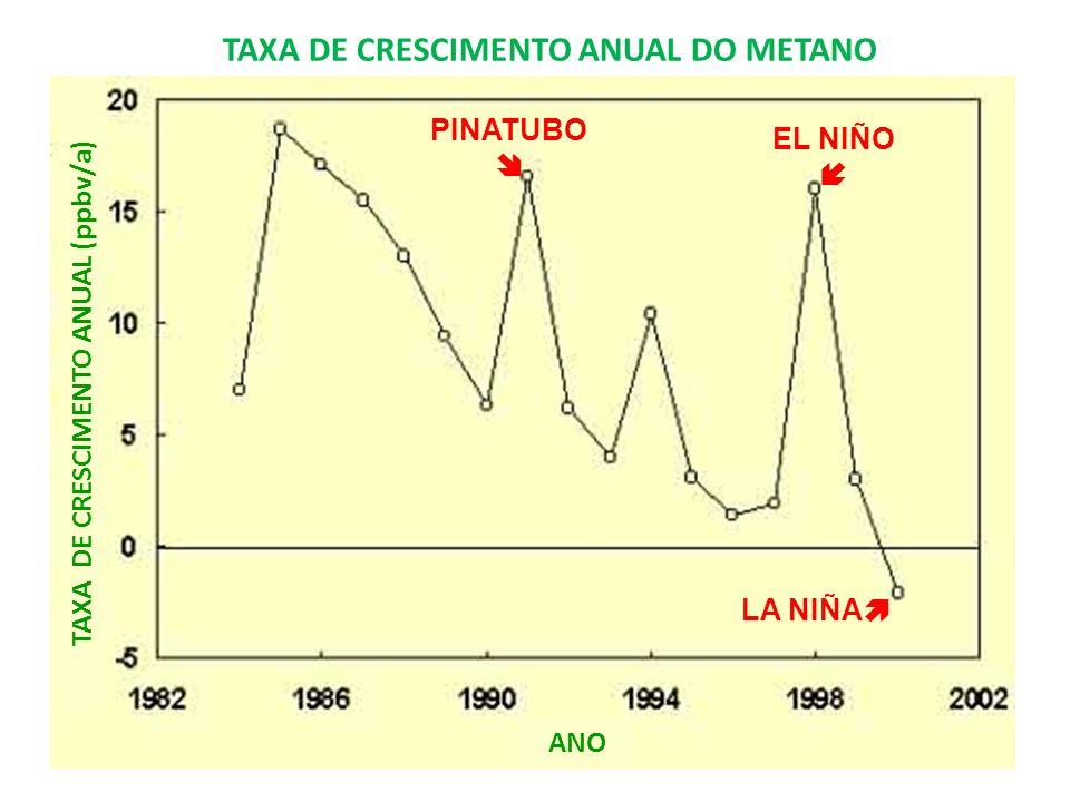 TAXA DE CRESCIMENTO ANUAL DO METANO TAXA DE CRESCIMENTO ANUAL (ppbv/a)