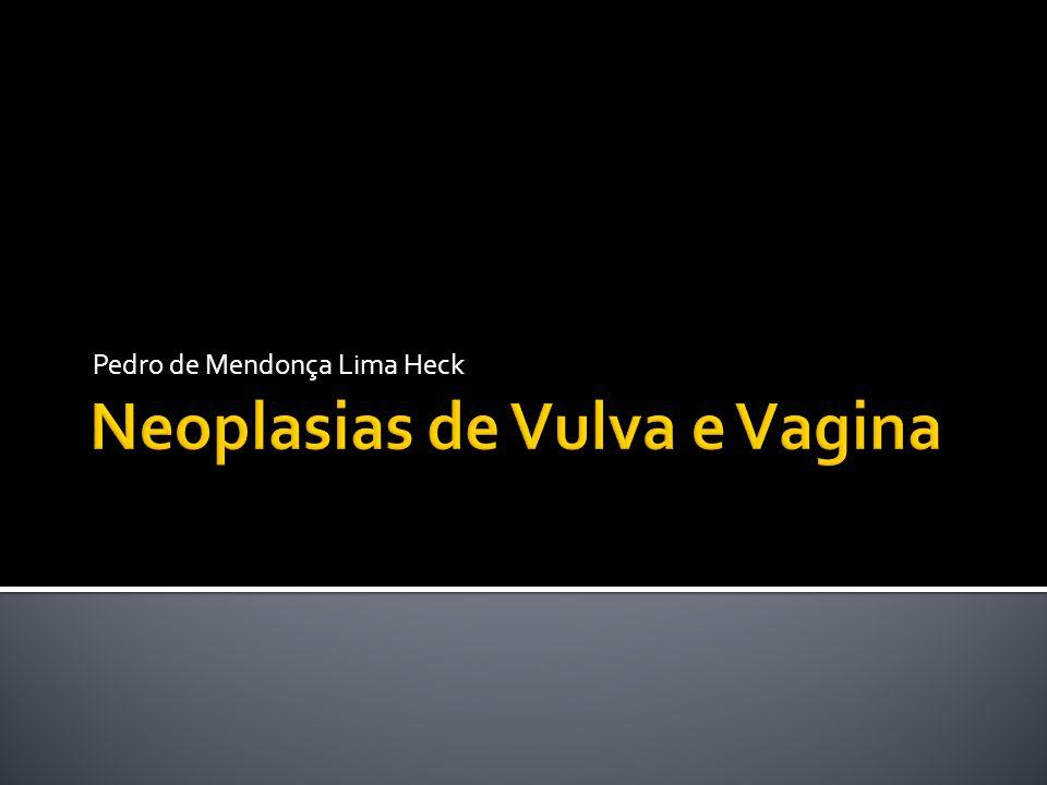 Neoplasias de Vulva e Vagina
