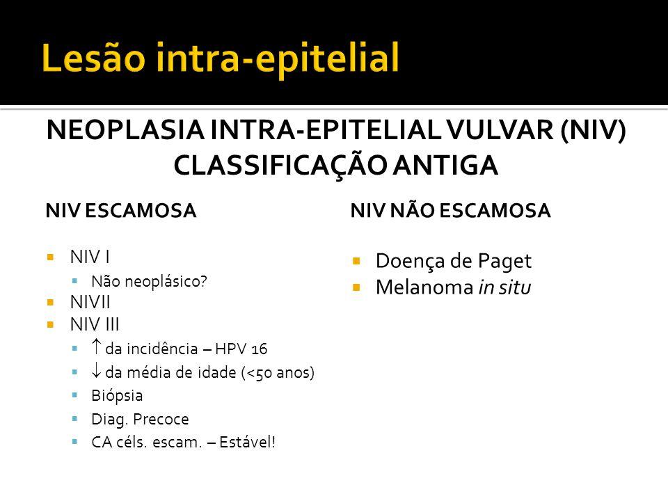 Neoplasia intra-epitelial vulvar (NIV)
