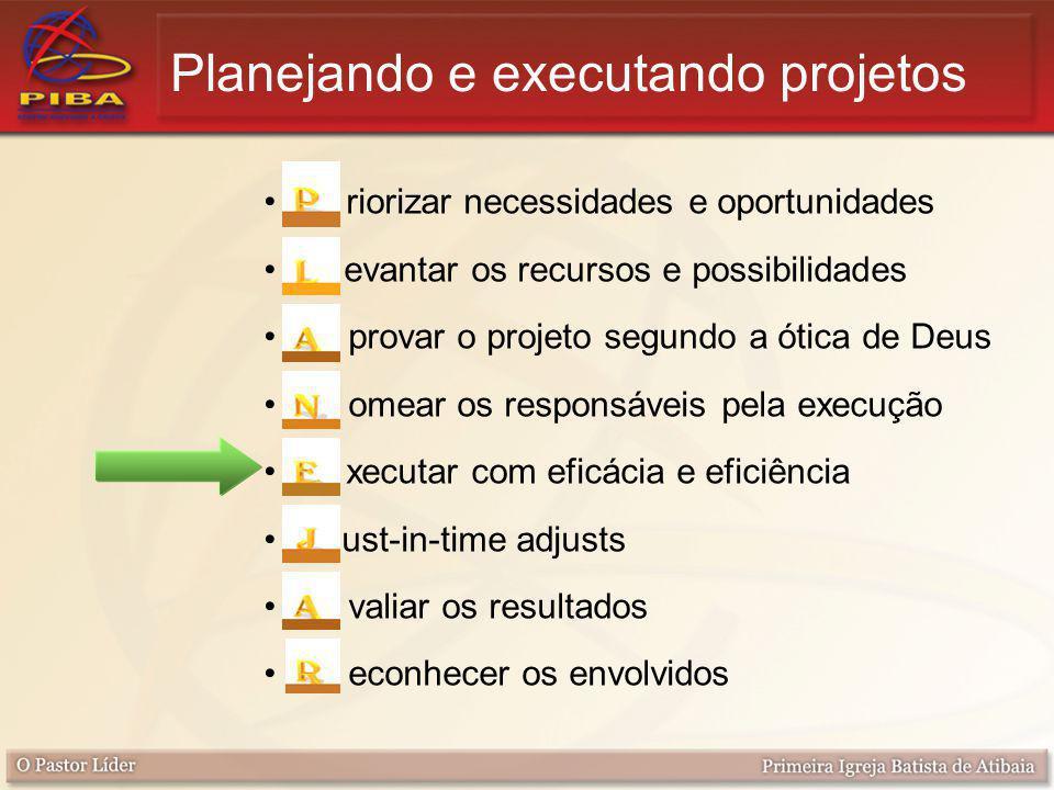 Planejando e executando projetos