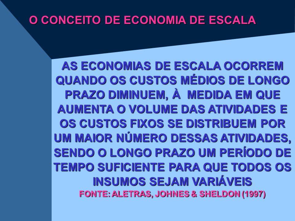 O CONCEITO DE ECONOMIA DE ESCALA