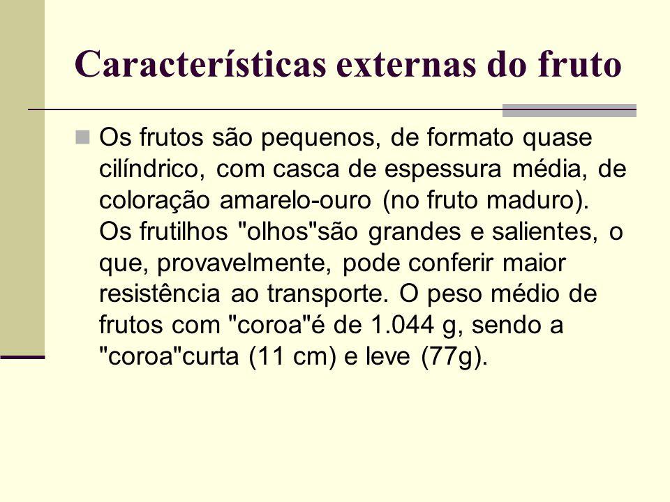 Características externas do fruto