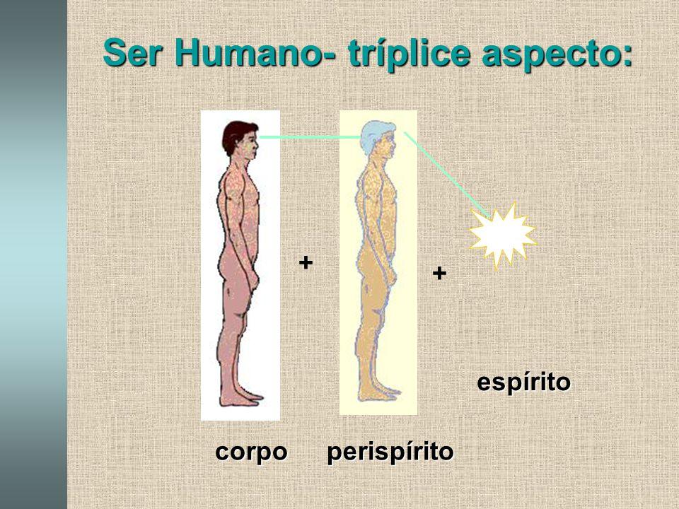 Ser Humano- tríplice aspecto: