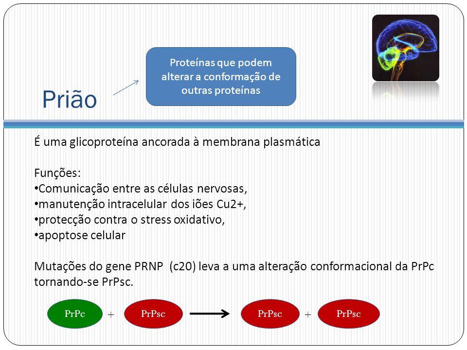 Proteínas que podem alterar a conformação de outras proteínas