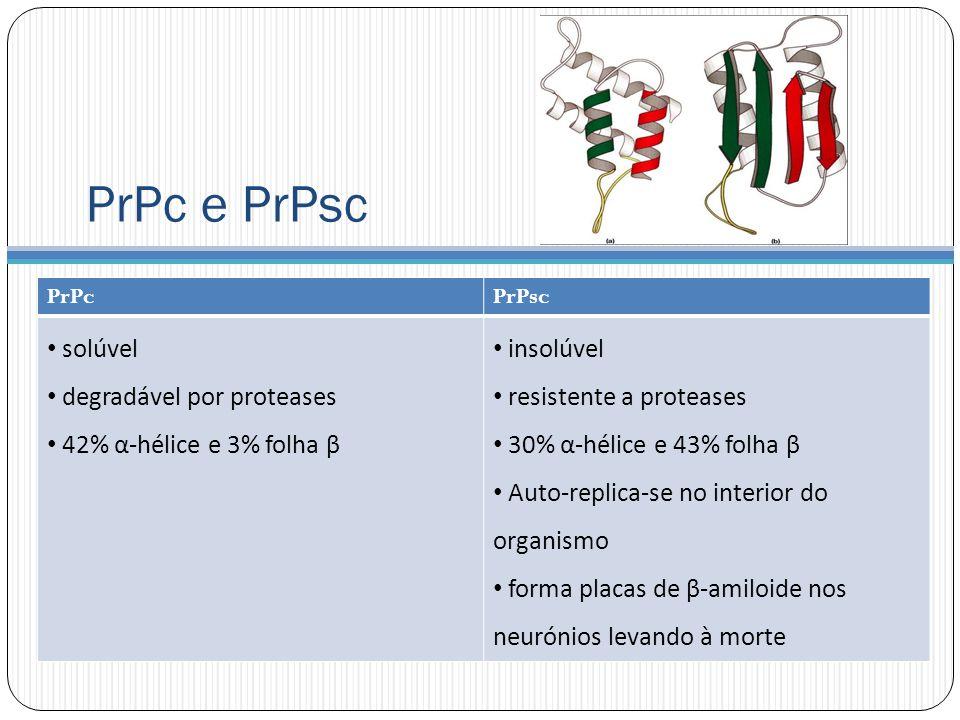PrPc e PrPsc solúvel degradável por proteases