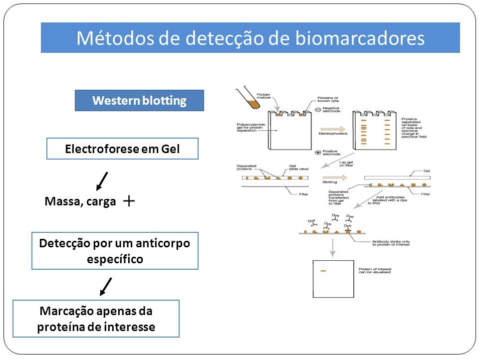 Métodos de detecção de biomarcadores