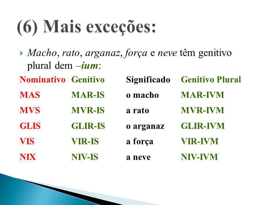 (6) Mais exceções: Macho, rato, arganaz, força e neve têm genitivo plural dem –ium: Nominativo Genitivo Significado Genitivo Plural.