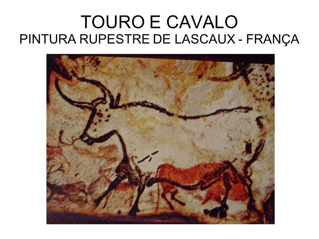 TOURO E CAVALO PINTURA RUPESTRE DE LASCAUX - FRANÇA
