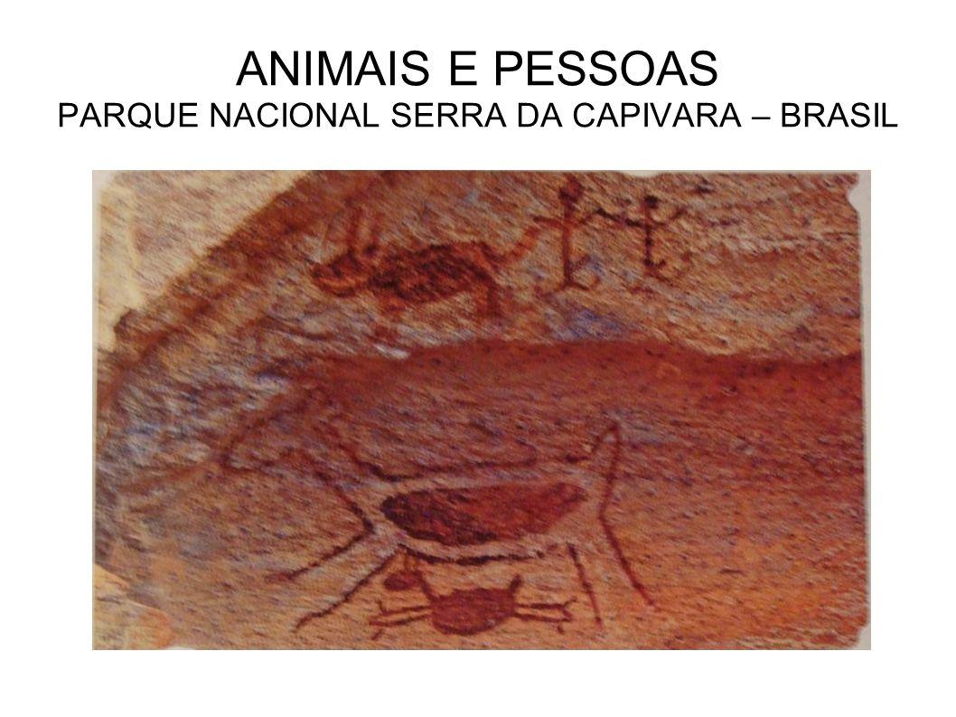 ANIMAIS E PESSOAS PARQUE NACIONAL SERRA DA CAPIVARA – BRASIL