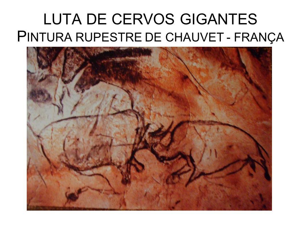 LUTA DE CERVOS GIGANTES PINTURA RUPESTRE DE CHAUVET - FRANÇA