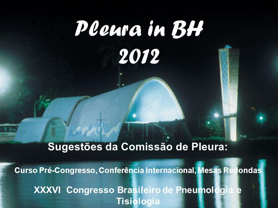 Pleura in BH 2012 Sugestões da Comissão de Pleura: